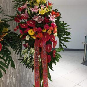 Inauguration Flowers #114